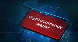Understanding more about cryptocurrency wallets